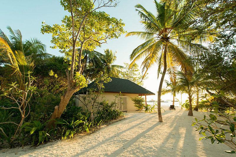 Pauschalreise Hotel Malediven,     Malediven - Nord Male Atoll,     Summer Island Maldives in Ziyaaraifushi