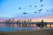 USA,     Kalifornien,     Comfort Inn & Suites Zoo Sea World Area in San Diego  ab Saarbrücken SCN