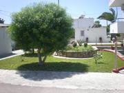 Hotel   Kos,   Sevi Apartments in Kefalos  auf den Griechische Inseln in Eigenanreise