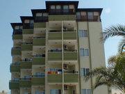 Pauschalreise Hotel Türkei,     Türkische Riviera,     Krizantem in Alanya