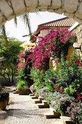 Hotel Kap Verde,   Kapverden - weitere Angebote,   Bazamore Residence in Santa Maria  in Afrika West in Eigenanreise
