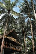 Pauschalreise Hotel Thailand,     Ko Samui,     Four Seasons Resort Koh Samui in Koh Samui