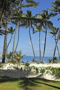 Das Hotel Grand Palladium Punta Cana Resort & Spa im Urlaubsort Punta Cana