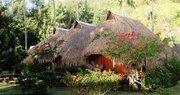 Hotel Französisch-Polynesien,   Französisch Polynesien,   Hibiscus in Moorea  in der Südsee Pazifik in Eigenanreise