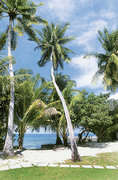 Malediven Reisen - Addu Atoll - Equator Village