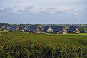Hotel Deutschland,   Nordsee Inseln,   Ferienzentrum Wennigstedt ( Sterne) in Wenningstedt-Braderup (Sylt)  in Deutschland Nord in Eigenanreise