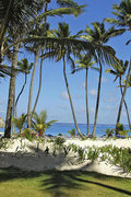 Pauschalreise          Grand Palladium Punta Cana Resort & Spa in Punta Cana  ab Stuttgart STR