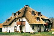 Hotel Deutschland,   Ostsee Inseln,   Kormoran in Ostseebad Prerow  in Deutschland Nord in Eigenanreise