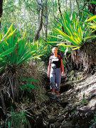 Hotel Kap Verde,   Kapverden - weitere Angebote,   Vulkanriese und üppig-grünes Bergland (Vulkanriese und üppig-grünes Bergland) ( Sterne) in Ilha do Fogo  in Afrika West in Eigenanreise