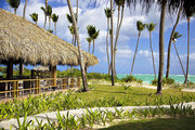 Dom Rep Last Minute Grand Palladium Punta Cana Resort & Spa   in Punta Cana mit Flug