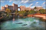 Billige Flüge nach Nassau (Bahamas) & Atlantis Royal Towers in Paradise Island