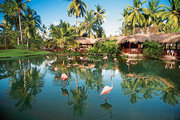 Top Last Minute AngebotNatura Park Beach Eco Resort & Spa   in Punta Cana mit Flug