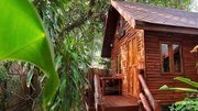 Pauschalreise Hotel Thailand,     Ko Samui,     Malibu Beach Resort in Ko Samui