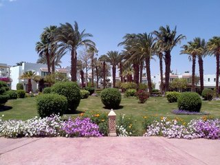 Pauschalreise Hotel Ägypten, Hurghada & Safaga, Lotus Bay Resort in Safaga  ab Flughafen