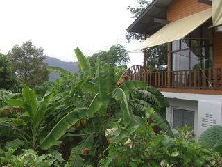 Pauschalreise in Thailand,     Phuket,     Club Bamboo (3   Sterne Hotel  Hotel ) in Patong