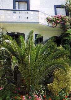 Pauschalreise Hotel Griechenland, Kreta, Fevro in Agia Galini  ab Flughafen Bremen