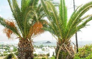 Pauschalreise Hotel Griechenland, Kos, Archodia Studios in Kefalos  ab Flughafen