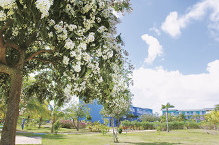 Pauschalreise Hotel Kuba, Jardines del Rey (Inselgruppe Nordküste), Hotel Playa Coco in Cayo Coco  ab Flughafen Bremen