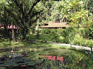 Pauschalreise Hotel Costa Rica - weitere Angebote, Esquinas Rainforest Lodge in Golfito  ab Flughafen Berlin-Tegel