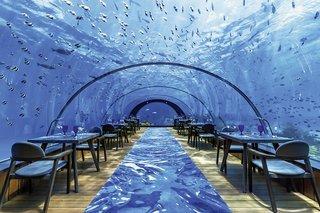 Pauschalreise Hotel Malediven, Malediven - weitere Angebote, Hurawalhi Island Resort in Huravalhi  ab Flughafen Frankfurt Airport