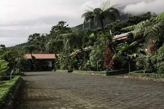 Pauschalreise Hotel Costa Rica, Costa Rica - weitere Angebote, Volcano Lodge & Springs in La Fortuna de San Carlos  ab Flughafen Berlin-Tegel