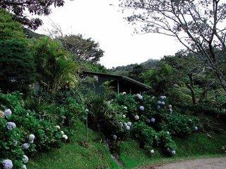 Pauschalreise Hotel Costa Rica, Costa Rica - weitere Angebote, Cloud Forest Lodge Monteverde in Monteverde  ab Flughafen Berlin-Tegel