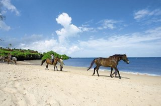 Pauschalreise Hotel Tansania, Tansania - Insel Zanzibar, Sea Cliff Resort & Spa in Mangapwani  ab Flughafen Berlin-Tegel