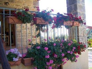 Pauschalreise Hotel Griechenland, Kreta, Akros Oreon in Kato Symi  ab Flughafen Bremen