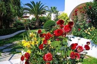 Pauschalreise Hotel Griechenland, Kreta, Papadakis Apartments in Georgioupolis  ab Flughafen