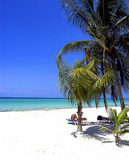 Pauschalreise Hotel Jamaika, Jamaika, Charela Inn in Negril  ab Flughafen Bruessel