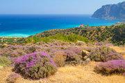 Pauschalreise Hotel Griechenland,     Kreta,     Amazona in Agia Pelagia