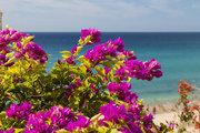 Pauschalreise Hotel Spanien,     Fuerteventura,     Monte Solana in Jandia