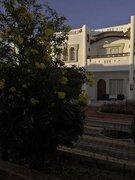 Ägypten Urlaub -> Sinai - Halbinsel -> Sharm el Sheikh -> Tivoli Sharm