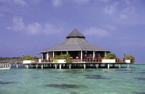 Umgeben von weißen Sandstränden, ca. 1,6 km lange und ca. 440 m breite Insel in einer türkisblauen Lagune. Das Hausriff ist ca. 300m entfernt ...