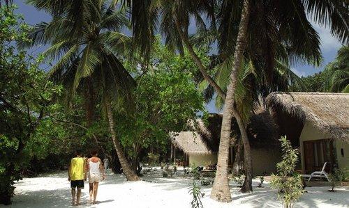 Die Insel befindet sich am östlichen Rand des Nord-Male-Atolls und ist etwa 800 m lang und 400 m breit. Das Hausriff ist ca. 150 m vom Strand ...