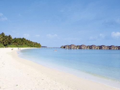 Weitläufige Insel (ca. 1.600 x 440 m) mit einem ca. 3 km langen, weißen Sandstrand und türkisblauer Lagune. Das artenreiche Hausriff ist ca. 300 ...