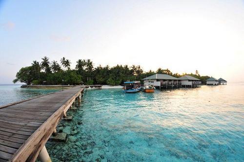 Highlights  ideal für Sportler und Ruhesuchende Insel mit familiärem Ambiente nahe des Vadoo-Kanals idealer Ausgangspunkt zu Top-Tauchgebieten ...